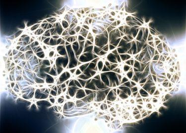 韓国研究チーム、恐怖記憶なくすシナプス変化を発見…PTSD克服に効果か