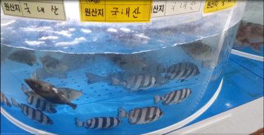 韓国自治体、日本産など水産物偽装店57カ所を摘発 念のため放射線を検査したところ…