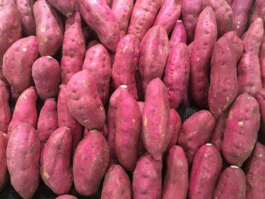 韓国のサツマイモ市場、「密輸日本産」がシェア最大も国産化進む