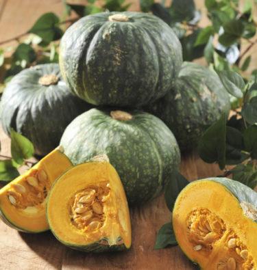 日本に「逆輸出」される韓国産かぼちゃ 「日帝時代は倭かぼちゃと忌避された」