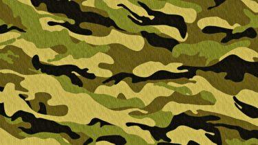 韓国で今度は「軍服素材の国産化」が推進 「警察制服や消防服にも広げよう」保守政党議員
